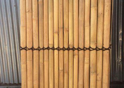 bambus_2